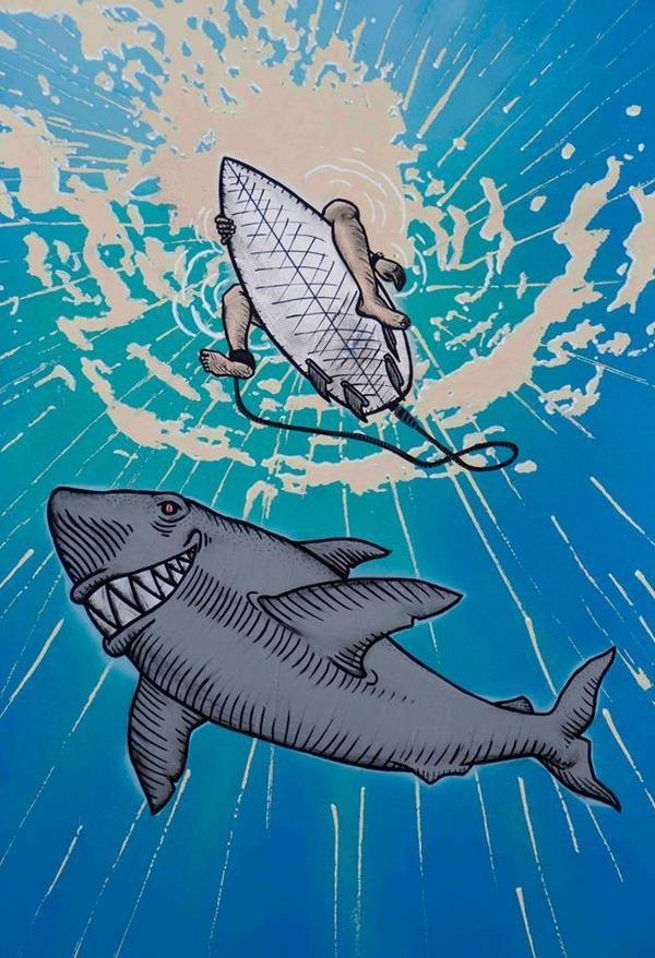 surf underwater shark